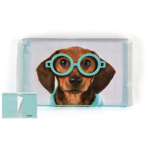 Glasses Dog Tissues