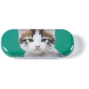 Kitten on Green Glasses Case