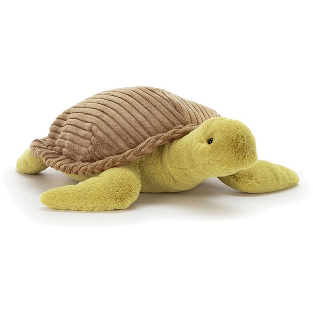 Terence Sea Turtle